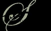 DSA logo green